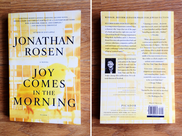 Jonathan Rosen - Joy Comes in the Morning